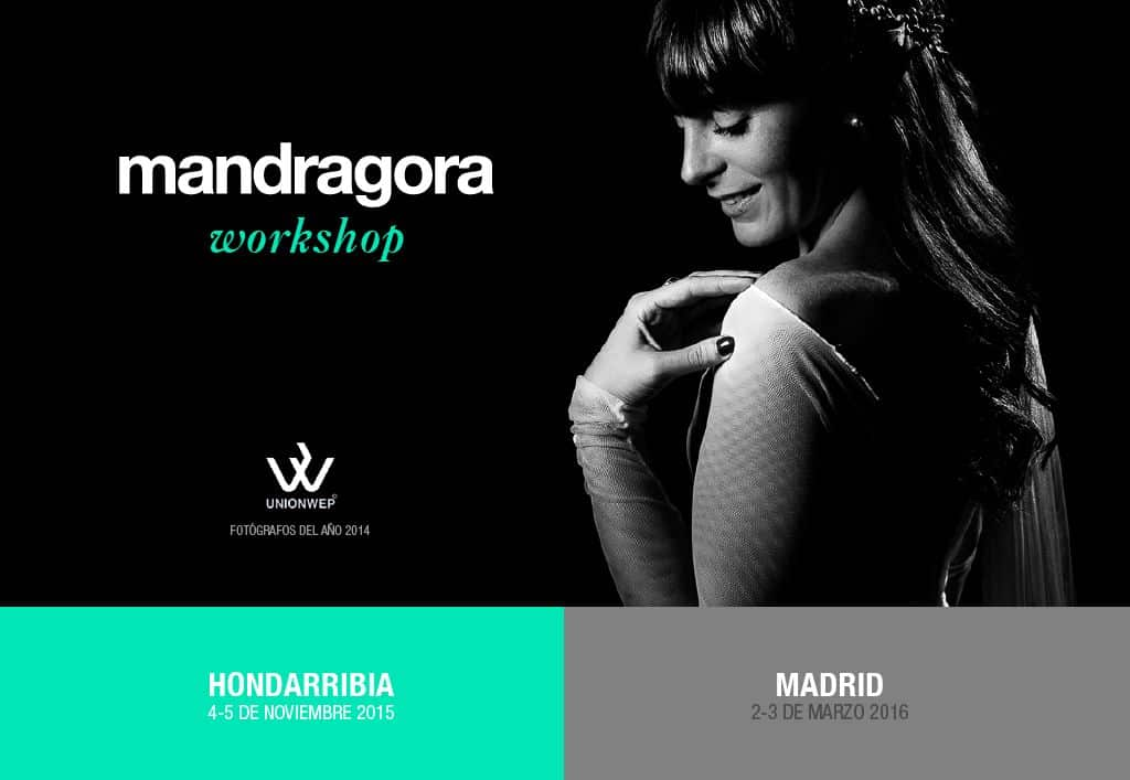 workshop-mandragora-001